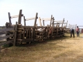 cattle chute at the clinic